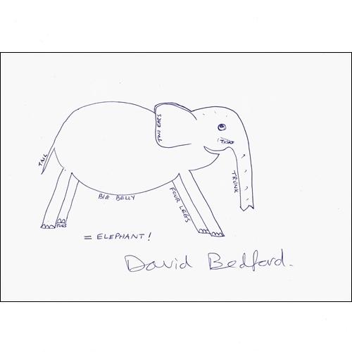 David Bedford
