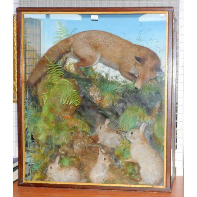 Thomas JeffriesTaxidermy Fox & Rabbit Ambush.19thc